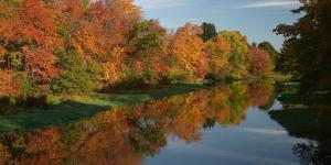 Assabet in fall.medium.jpg