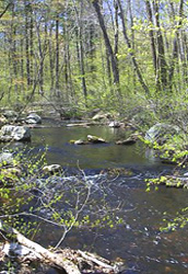 Danforth Brook, Hudson